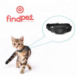 gps gato findpet mini