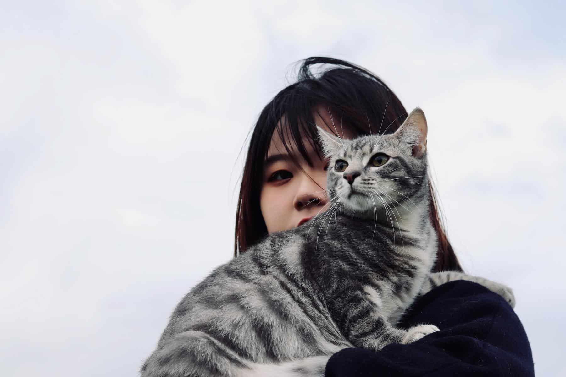 gato chica es